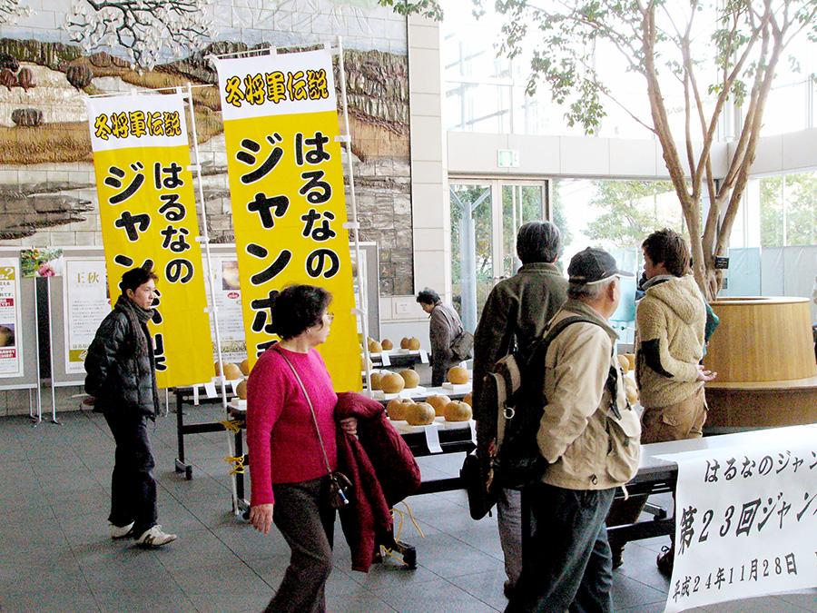 出来映えは上々/榛名ジャンボ梨コンテスト - 高崎のニュースサイト 高崎新聞